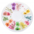 Сухи Цветя за Декорация на Маникюр Модел17