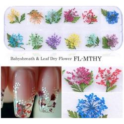 сухи цветя за декорация на маникюр - FL-MTHY