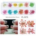 сухи цветя за декорация на маникюр - FL-MTX