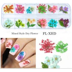 сухи цветя за декорация на маникюр - FL-XHD