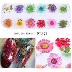 сухи цветя за декорация на маникюр - FL-677
