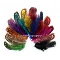 естествени пера за декорация 4