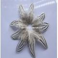 естествени пера за декорация в бяло и черно