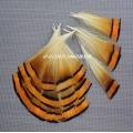 естествени пера за декорация 3