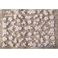 3D стикер цветя бели холограмни лепящ YG324